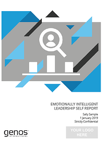 EI Leadership Self-Assessment